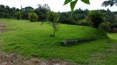 Fazendas - Sítios - Chácaras À Venda Em Santa Isabel Guarulh