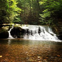Waterfall on Big Beechy Cranberry Wilderness Area, West Virginia