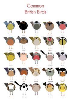 Common British Birds by Cher Pratley