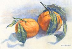 Satsuma Oranges, 5x7 in, Colored Pencil on Paper, by Julie Kessler