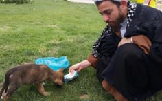 In spite of a lifelong fear of dogs, this Iranian mullah has dedicated his time to helping stray animals.