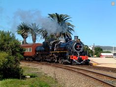 Timeless beauty of Steam Locomotives - SAR South African Railways, Abandoned Train, Steam Engine, Steam Locomotive, Train Station, Timeless Beauty, Big Boys, Locs, Tractors