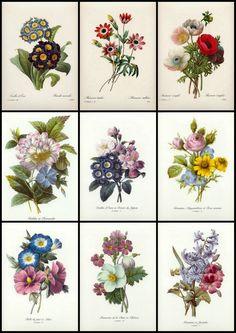 ArtbyJean - Paper Crafts: Nine little Vintage Flower Prints for your Cards.