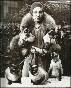 Lady with Siamese Cats