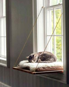 schonefrisuren - Fensterbank Katzenbett Window sill cat bed - instructions for crafting Cat Window Perch, Window Sill, Lit Chat Diy, Wooden Cat House, Diy Cat Bed, Cool Cat Beds, Diy Dog, Gatos Cat, Cat Room