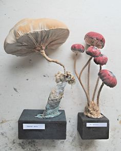 Soft sculpture mushrooms