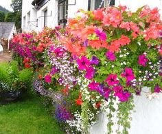 Add window boxes - How to Fix Up the Front of a Ranch Style Home | eHow.com