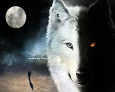 wolf fantasy pics | wolf - Fantasy Wallpaper (34175209) - Fanpop fanclubs