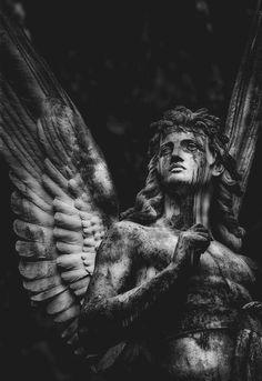 all white party c-onvictus: Der Schnste der Protestanten (Colour Source: okkvlt) black angel gothic statue art Cemetery Angels, Cemetery Art, Statue Ange, Arte Obscura, Black Angels, Angels And Demons, Angel Art, Renaissance Art, Aesthetic Art
