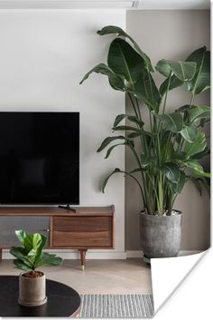 Interior Plants, Interior Design, Decoration Plante, Plant Aesthetic, House Plants Decor, Mid Century Style, Indoor Plants, Living Room Decor, New Homes