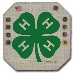 The 4-H Bauble® Board is our Cornered Square Mini design covered in either natural or white fabric and includes the 4-H Logo single color image in green.  This makes a great display board for 4-H lapel pins and can be used as a fun memo board or functional wall decor for 4-H members and supporters.  It is also a great way to present someone with a pin for service and recognition.  (Please note that Bauble Board, Inc. was granted permission to use the 4-H Logo/Emblem in this manner from the…
