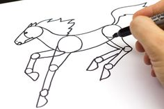 How To Draw A Horse. great for our Horse Unit Study!