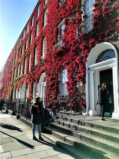 Ireland Travel Guide, Dublin Travel, Dublin City, Paris Travel, City Aesthetic, Travel Aesthetic, Places To Travel, Places To See, England