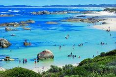 Swimmers in Greens Pool, located in William Bay National Park, near Denmark, Western Australia Perth Western Australia, Sydney Australia, Australia Travel, Australia Destinations, Australia Tours, South Wales, Westerns, Travel Around, Places To See