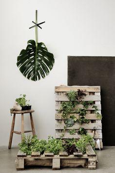 Heidi Lerkenfeldt ⋆ STILLSTARS - CLAUDIA SCHÜLLER green plants and pallets