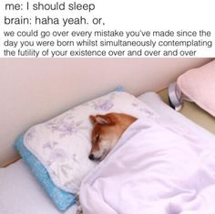 But mostly it's about doing this every single night: | 19 Pictures That Perfectly Sum Up Becoming An Adult