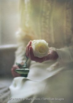 Trevillion Images - woman-in-white-holding-rose