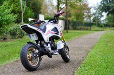 Custom Honda grom/msx125