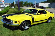 1970 Ford Mustang Boss 302. Yellow.