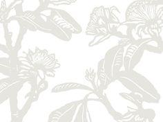 Shark Bay Rose (Smoke) | Jude Taylor | Wildflower Art, Design & Fabric | Swan Valley, Perth, WESTERN AUSTRALIA
