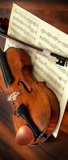 Sí, el rey confía en el Señor y con la gracia del Altísimo no vacilará.   violin