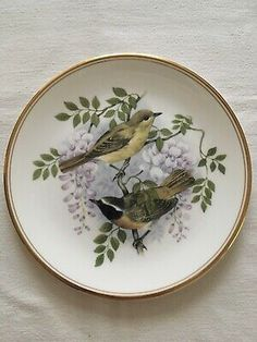 Birds Of The Hedgerow REDSTART WITH WISTERIA Collectors Plate Fine Bone China  | eBay