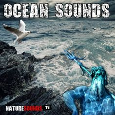 Calming sounds from the ocean. This album contains 15 tracks of ocean sounds for sleep and relaxation Calming Sounds, Ocean Sounds, Nature Sounds, Fatal Attraction, Law Of Attraction Affirmations, Ocean Waves, Meditation, Relax, Sleep
