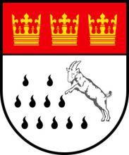 Geißbock Hennes kommt zu neuen Ehren: Das Tier soll Bestandteil eines neuen Kölner Wappens werden.
