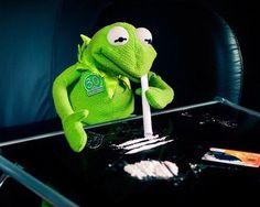 Kermit the frog  cocaïne. Discover and share the most beautiful images from around the world - Hand puppet, Kasperle Puppe, handpop, Marionnetta à gaine, Titere de guante, Pacynka, Handdoll, Burattino, Handdukke, Kukiełki pacynek, titella