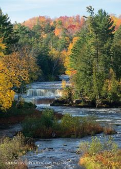 Lower Tahquamenon Falls Michigan's Upper Peninsula