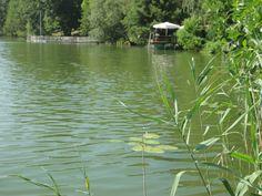 summer day in Buckow Summer Days, Switzerland, Germany, Mountains, Nature, Travel, Naturaleza, Viajes, Deutsch