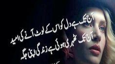 Best Urdu Poetry: Ajj Tak ha Dil Ko Us K Laot Anne Ki Umeed