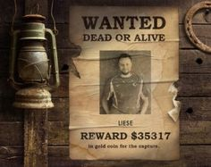 Wanted: Liese | Reward: 35317