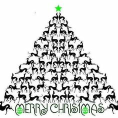 Greyhound Christmas