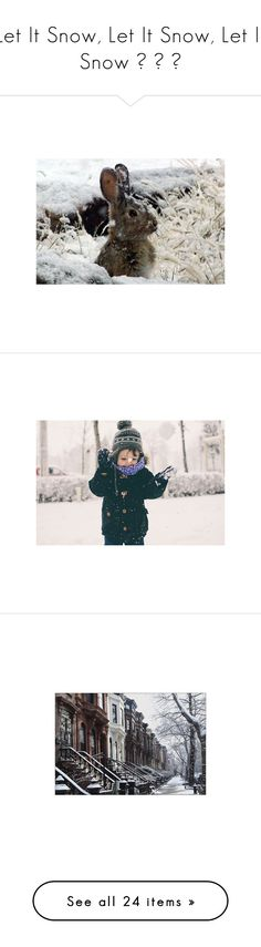 """""""Let It Snow, Let It Snow, Let It Snow ❅ ❄ ❆"""" by allweknowisfalling ❤ liked on Polyvore featuring animals, photos, backgrounds, pictures, christmas, sliki, photo, tumblr, winter and photography"""