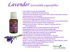 Lavender has a fresh, sweet, floral, herbaceous aroma that is soothing and refreshing. Because it is the most versatile of all essential oils, no home should be without it!