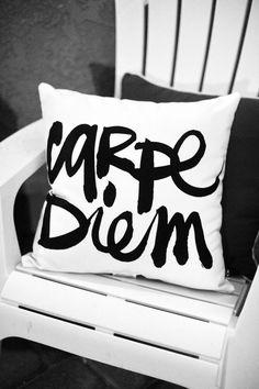 Carpe Diem Indoor/Outdoor Pillow   decor & crafts idea