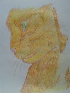 30 day drawing challenge : day Something orange. My cat, Von D. 30 Day Drawing Challenge, 30th, Challenges, Orange, Drawings, Painting, Painting Art, Sketches, Paintings