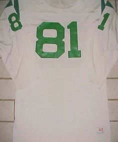 Philadelphia Eagles 81 NFL NFC East Champion White Green Vintage Jersey 42 156679a44