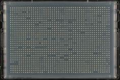 Yeast_colonies_array_1536_format.jpg (1851×1240)