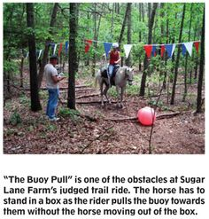 Homemade Horse Obstacles | Trail Obstacles For Horses