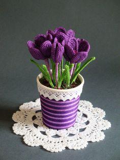 Crochet Sainpaulias Pattern Cr