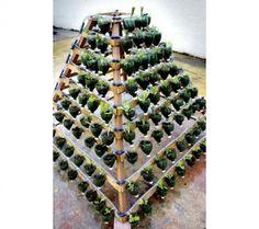 Horta piramidal é solução para o plantio em pequenos espaços