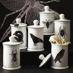 The porcelain Natural Curiosities Jars feature some ominous animals (say that three times fast) and since it's porcelain, they'll last a long time.