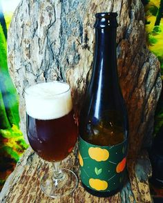 """From Four Winds Brewing in Delta comes their """"Fortunello Farmhouse Ale"""". For the full review of this Foeder aged beer follow the link below.   http://wp.me/p2vssO-ew8"""