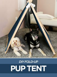 This DIY pup tent folds up for easy transport!