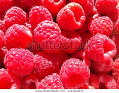 Fresh raspberry berries, food background at my Shutterstock portfolio Food Backgrounds, Raspberries, Photo Editing, Royalty Free Stock Photos, Low Carb, Victoria, Diet, Fresh, Healthy