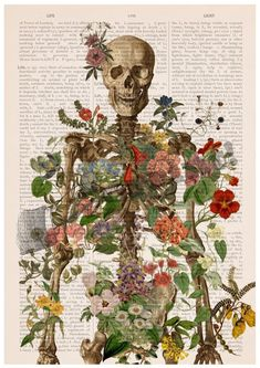 Gift Idea, Wall art Anatomy Wall Art - Flower Skeleton - Human Skeleton Art - Anatomy Illustration -home decor - Anatomy Print - SKA146PA3