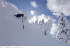 Telemark Skiing, Furano, Hokkaido, Japan