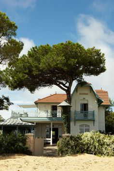 The English owners of this picture-perfect beach house, Villa Isabelle, on Cap Ferret, near Bordeaux, had been holidaying on the peninsula for 10 years or so, casting the odd casual glance in the estate agent's window, but little more. Out of the blue, they got a call to say this house was for sale and they went the very next weekend, saw it on Saturday and signed for it on Sunday.  'It was in an unspeakable state; it was as if it had been camped in rather than lived in, with only one…